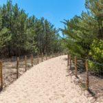 Chemin vers la Plage des Dunes