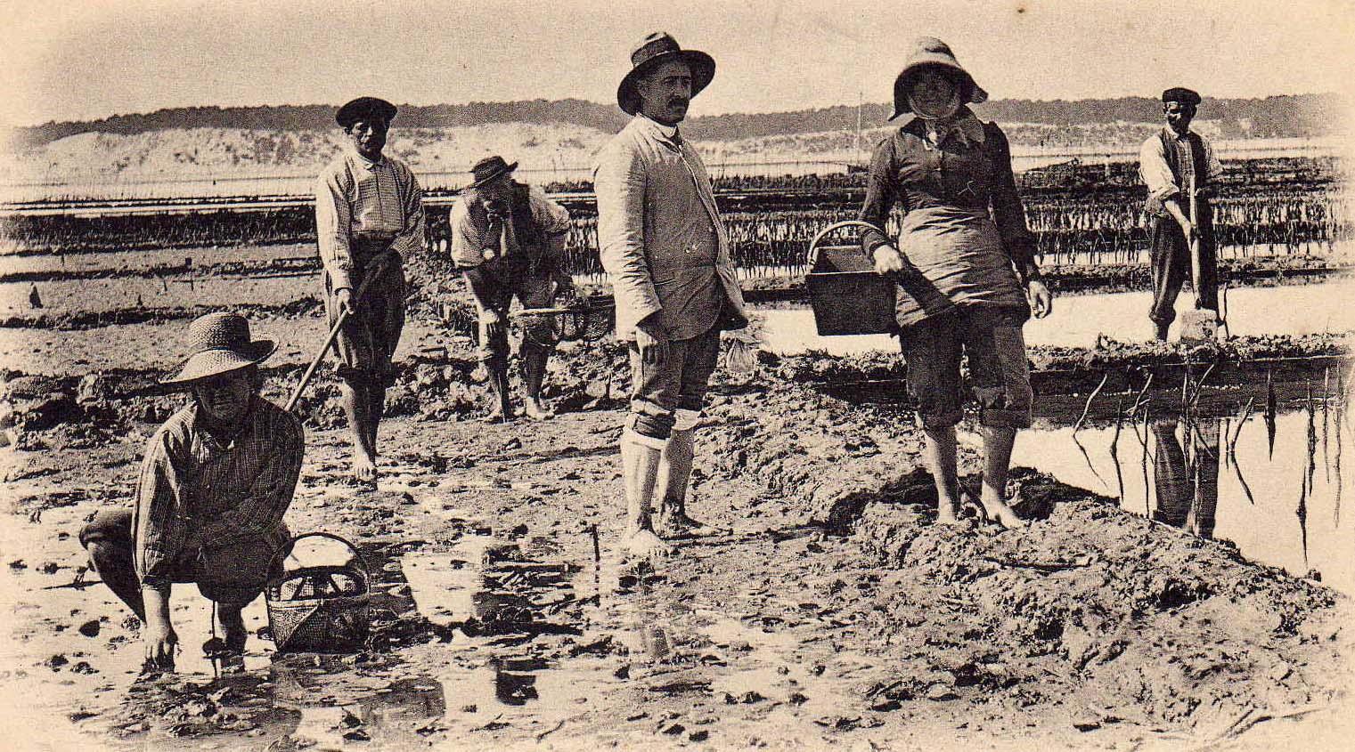 Histoire du Cap Ferret en carte postale ancienne