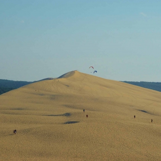Barry-Marsh-Dune du Pilat, Arcachon, Aquitaine, France