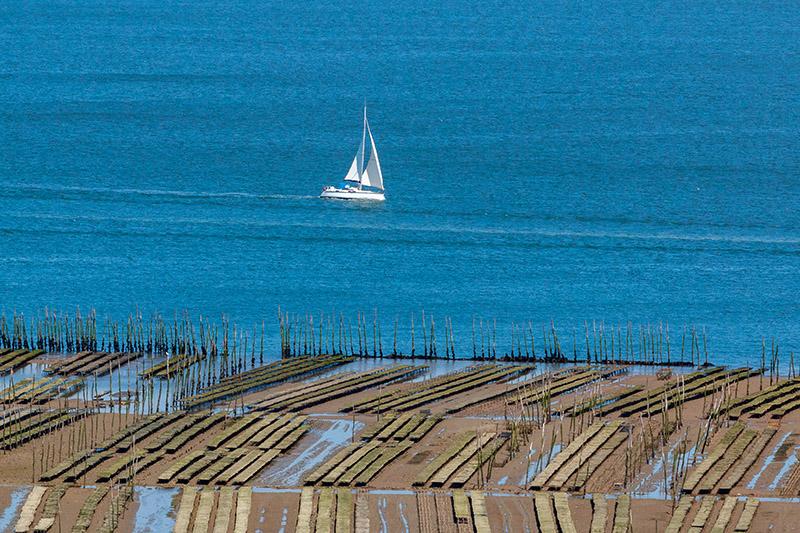 Louer un bateau depuis le Cap Ferret : voilier, catamaran, bateau à moteur