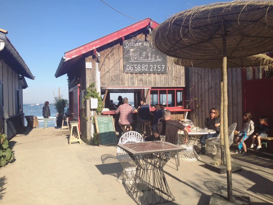La cabane reveleau d gustation d 39 huitres au canon cap ferret - Restaurant au cap ferret ...