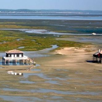 Ile aux oiseaux et ses cabanes tchanquées au Cap Ferret