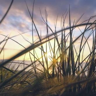 Coucher de soleil a Lege