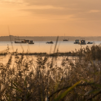 Lumière du matin sur le Bassin d'Arcachon