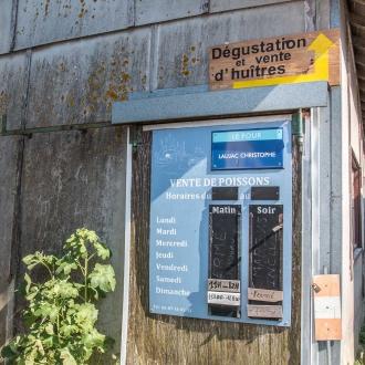 Dégustation et vente d'huitres au Cap Ferret