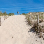 Passage de dune depuis la plage de la Torchère sur la presqu'ile du Cap Ferret