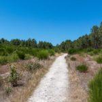 Nature environnante à proximité du Camping Brémontier au Grand Crohot