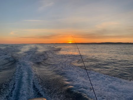 Balade en bateau au coucher du soleil au Cap Ferret