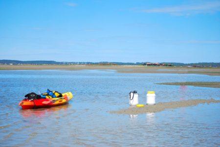 balades-canoe-ile-aux-oiseaux