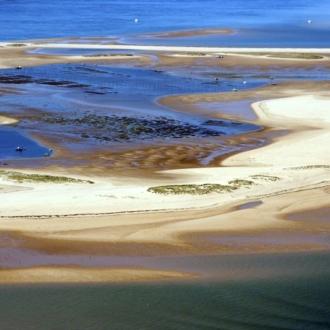 La reserve naturelle du Banc d'Arguin