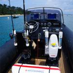Bateau à moteur de JS pêche sportive