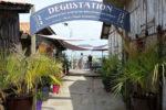 Cabane de dégustation Techoueyres à Piraillan