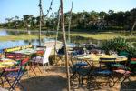 La Cabane du Mimbeau : dégustation d'huitres au Cap Ferret