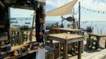 Cabane 171 : dégustation d'huitres au Canon à Lège-Cap Ferret