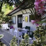jardin de la chambre d'hotes la cabane pomme de pin au cap ferret