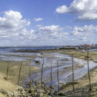 Vue panoramique sur le port ostréicole de Piraillan au Cap Ferret