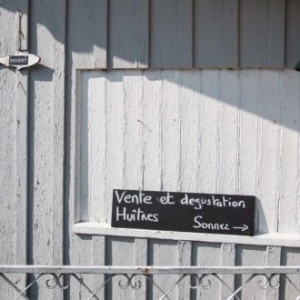 Degustation d'huitres aux Jacquets Cap Ferret