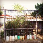 Jardin de Emile et une Huitre au Cap Ferret