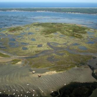 Vue sur l'ile aux oiseaux et le Cap Ferret