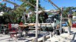 Dégustation d'huitres à l'Herbe au Cap Ferret