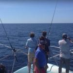 Sortie pêche sur le Paul Luce