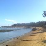 Découverte du Bassin d'arcachoj en pinasse traditionnelle depuis le Cap Ferret